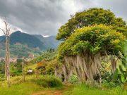 Senderismo por la verdeda la salada en Jardín Antioquia